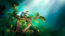 Fantasy Bonsai Carmona Tree With Sitting Gray Parrot Bird In Magical Elf Forest, Blooming Golden Flowers In Fairy Tale Green Garden, Fairytale Glade In Elven Magic Dreamy Wood In Night With Moon Rays.