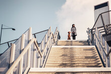 Low Angle View Of Woman And Dog Standing On Staircase