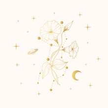Golden Celestial Morning Glory. Vector Illustration With Geometrical And Spiritual Plant, Stars And Moon For Greeting Cards And Invitations.