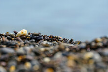 Pebbles On The Shore With A Blurred Foreground