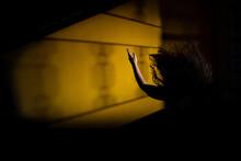 Silhueta De Mulher Misteriosa Com Braço Pra Cima E Cabelos Esvoaçantes Com Sombra De Uma Janela.