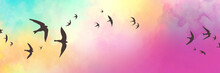 Black Bird Silhouettes On Sunset Sky Background, Birds Sketch In Black Outlines Flying In Sunset Clouds, Flock Of Birds, Colorful Blue Yellow Pink And Purple Clouds, Beautiful Sunset Colors In Nature