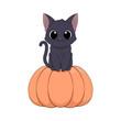 Słodki czarny kot siedzący na pomarańczowej dorodnej dyni. Halloween. Cukierek albo psikus! Uroczy ręcznie rysowany mały kotek. Ilustracja wektorowa.