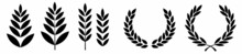 Foliate Laurels Branches Set. Vector Illustration. Black Circular Laurel Wreath Collection.