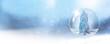 canvas print picture - Schneekugel mit Tannenbaum vor unscharfem Hintergrund