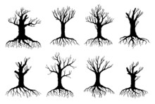 Dead And Withered Tree Vector Silhouettes Of Environment And Ecology Design. Old Dry Crooked Tree Isolated Objects, Black Bare Branches, Trunks, Roots And Leafless Crowns Of Forest Plants