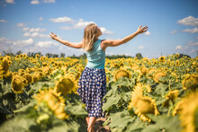 Beauty Sunlit Woman On Yellow Sunflower Field Freedom And Happiness Concept. Happy Girl Outdoors