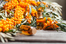 Natural Oil Of Sea Buckthorn (Hippophae) In Glass Bottle With Fresh, Juicy Ripe Yellow Berries On A Wooden Background