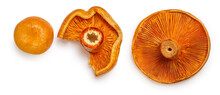 Red Pine Mushrooms Isolated  On White Background. Top View.  Flat Lay.