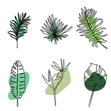 Set Of Hand Drawn Tropical Leaves (one Line Art Style) With Abstract Color Shapes.