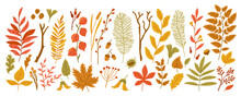 Autumn Leaves And Branches With Berries, Acorns, Cones