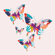 Colorful Butterflies Vector Illustration Background. Nature Inspired, Flying Insect, Moth Poster