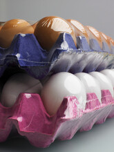 Trays Of Eggs Shrink Wrapped And Stacked
