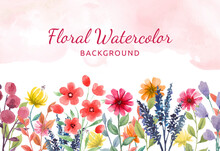 Hand Painted Watercolor Floral Background With Colorful  Flowers