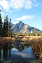 Mountain Meets Wetlands, Banff National Park, Alberta