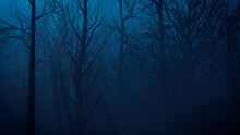 Trees In Haunted Forest. Halloween Background.