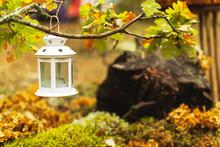 White Decorative Lantern Hangs On An Oak Branch. Autumn Landscape