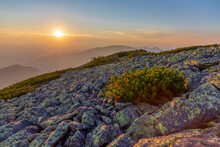 Magical Summer Sunset In The Carpathian Mountains With Over The Rocky Outcrops Of The Gorgany Region. Picturesque Sunset In The Mountains Over The Rocky Surface Of The Mountain. Vibrant Photo Wallpape