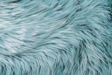Fur Texture Top View. Turquoise Fur Background. Fur Pattern. Texture Of Turquoise Shaggy Fur. Wool Texture. Flaffy Sheepskin Fur Close Up