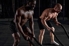 Diverse Healthy Men, Athlete Doing Exercise With Battle Ropes In Gym. Caucasian And African Male Models Practicing Hard And Training Upper Body. Healthy Lifestyle, Sport, Fitness, Wellbeing Concept
