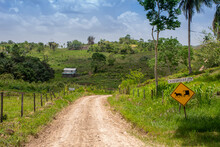Lonely Backroad In The Cayo District Of Belize Near Mennonite Settlement Of Spanish Colony.