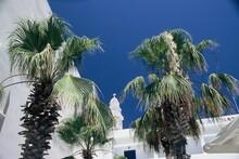Mediteranean Courtyard