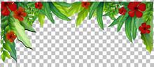 Green Nature Leaves Frame Transparent Background