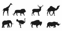Wild Life Animals Silhouette Set