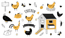 Chicken Farm Organic Eggs And Meat Icon Set