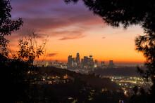 Los Angeles Framed In Trees