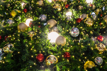 Christmas Tree Background Decorated With Beautiful Lights