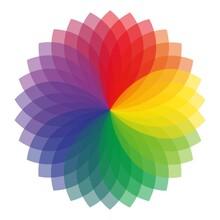 Rainbow Petals On A White Background, Flower Shape, Transparent, White Background , Stock Illustration
