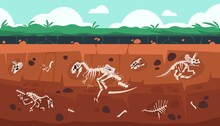 Underground Fossil. Cartoon Earth Ground Layers With Dinosaur Skeleton And Skull. Extinct Reptile Bones Science Exploration. Vector Geology And Paleontology Excavation Illustration