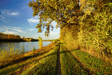 A Beautiful Autumn Day At River Rhine. A Path Leading Along The River. Germany, Baden-Wuerttemberg.