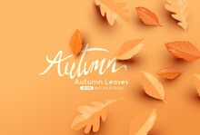 Falling Autumn Leaves Background With Copy Space. Autumn Fall Vector Illustration
