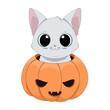 Zabawny biały kot chowający się w wydrążonej dyni. Ilustracja na Halloween. Cukierek albo psikus! Uroczy ręcznie rysowany mały kotek. Ilustracja wektorowa.