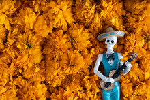Músico Catrin Con Guitarra Sobre Fondo De Flor De Día De Muertos