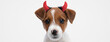 canvas print picture - sweet jack russell terrier dog wearing devil horns