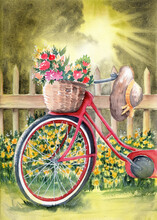 Watercolor Illustration Of A Red Bicycle With A Basket Of Flowers And A Straw Hat Standing By A Fence With Blooming Yellow Wildflowers