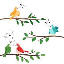 Bird Songs. Singing Birds Friends On Tree Branches, Birdes Cartoon Musical Baby Background, Romantic Couple Banner, Little Birdie Whistle Song Cute Vector Illustration Isolated