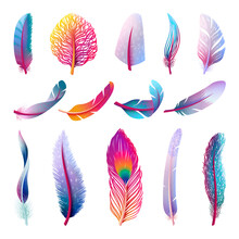 Isolated Feather Collection. Colorful Fantasy Feathers, Peacock Bird Tail Element. Isolated Festive Decorative Plumage Swanky Vector Collection