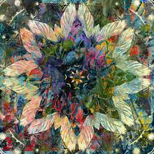 Kaleidoscopic Square Cream Floral Burst On Green Graphic Design
