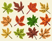Collection Of Simplicity Maple Leaf Freehand Drawing Flat Design.