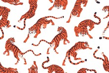 Seamless Pattern With Angry Tigers. Endless Repeating Background With Evil Wild Felines Prowling And Roaring. Texture Design With Tropical Animal For Printing. Colored Flat Vector Illustration