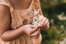 Picking A Small White Flower For Mom