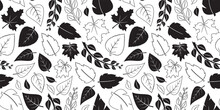 Autumn Leaves Vector Seamless Pattern, Fall Black Flat And Outline Design. Nature Background. Simple Season Illustration