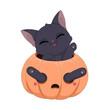 Zabawny czarny kot bawiący się w wydrążonej dyni. Ilustracja na Halloween. Cukierek albo psikus! Uroczy ręcznie rysowany mały kotek. Ilustracja wektorowa.