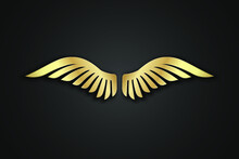 Pair Of Wings Logo, Wings Logo Vector, Golden Wings Design Illustration,