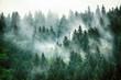canvas print picture - Misty mountain landscape