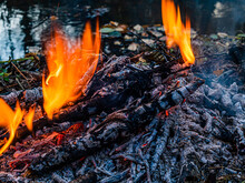 Burning Fire On The Bank Of A Stream With Floating Fallen Leaves
